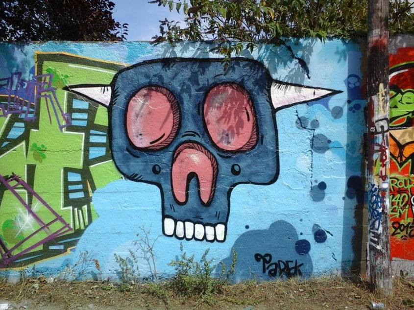 Skull by Tarek