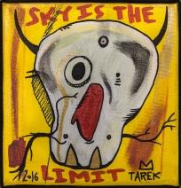 Sky is the limit by Tarek